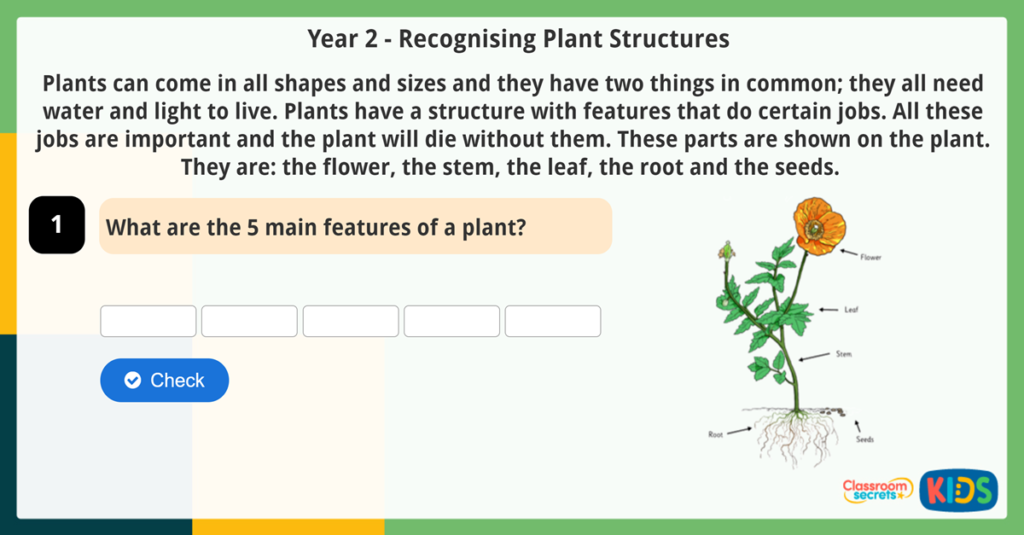 Year 2 Science Reading Comprehension Recognising Plant Structures