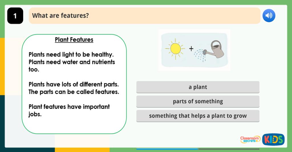 Year 1 Understanding Vocabulary Activities