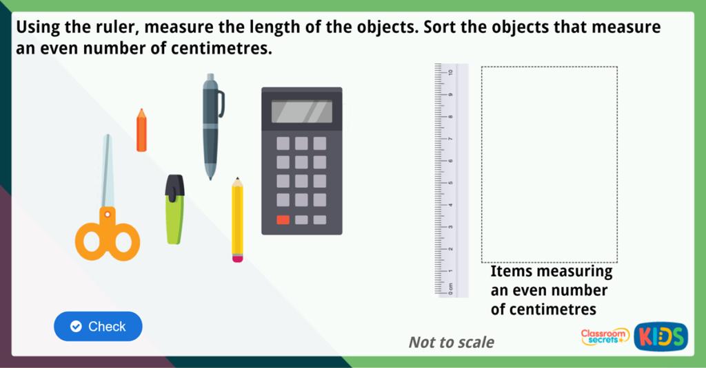 Year 2 Measure Length cm