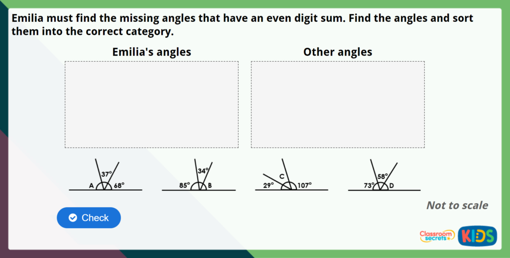 Year 5 Angles on a Straight Line Maths Challenge