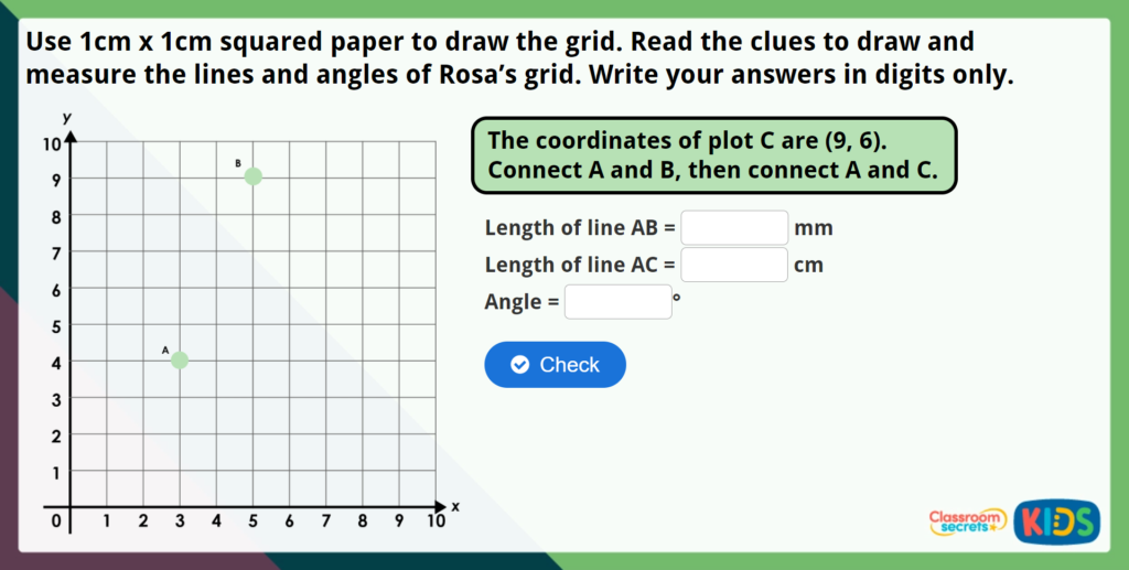 Year 5 Drawing Lines and Angles Accurately Maths Challenge
