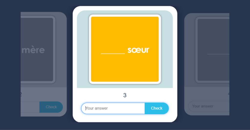 French Ma, Mes or Mon Flash Cards