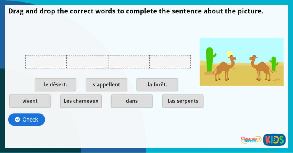 French Animals Activity