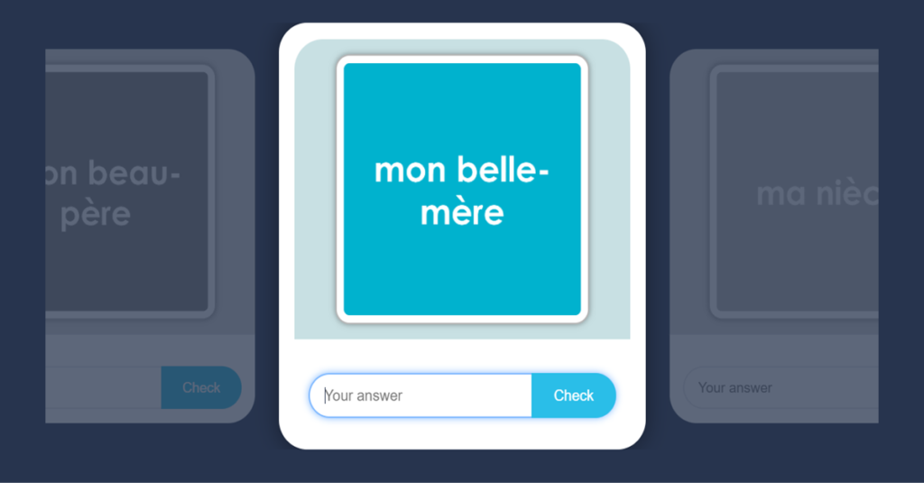Year 5 French My Family Flashcards 2
